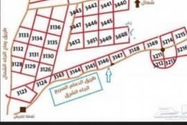 منح شرق الرياض, عقارات,  قطعة أرض