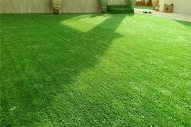 انجيلة صناعية للفلل والحدايق , المنزل والحديقة, زراعة الحدائق والنباتات