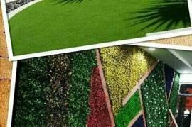 عشب جدارى بتشكيلة رائعة , المنزل والحديقة, الديكور المنزلي